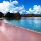 Lokasi dan Keindahan Pantai Pink