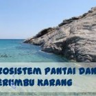 Pengertian Ekosistem Pantai
